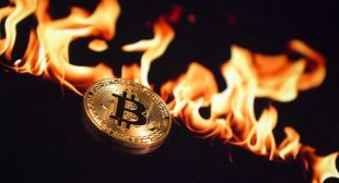 Over $550 billion wiped off cryptocurrencies since record high just under a month ago